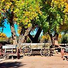 Heritage Farms at Albuquerque Botanical Gardens by Debby Pueschel