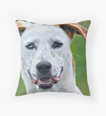 Two Toned Throw Pillow