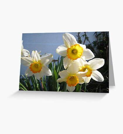 Funicular's Foot Flowers Greeting Card