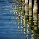 Down at the Boardwalk by Vicki Pelham