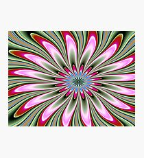 Holiday Flower Photographic Print