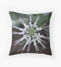 Cats Wiskers Throw Pillow