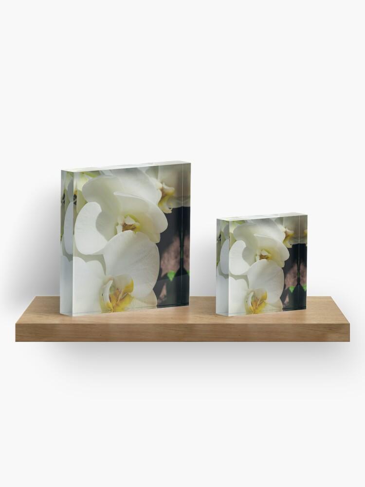 Vista alternativa de Bloque acrílico Delicia de orquídeas