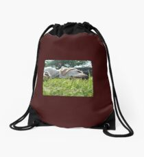 Labradors Drawstring Bag
