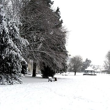 Snowtime In Abergavenny by raytylerimages