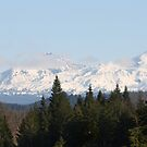 Snowy Mountains by Chappy