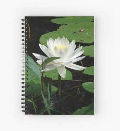 Nymphaea odorata Spiral Notebook