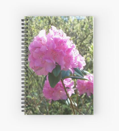 Poppin' Pink Spiral Notebook