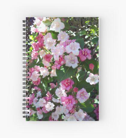 Spring Pinks - Carnival Wigelia Spiral Notebook