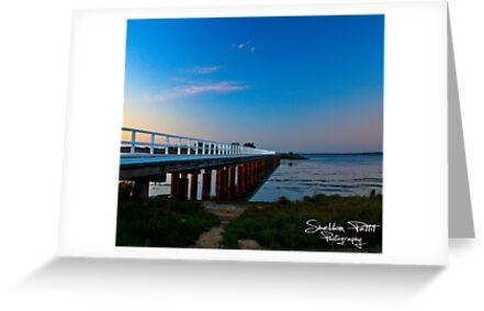 The Pier by Sheldon Pettit