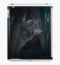 Night Visitor 3 - Psuedo Night Shot PS3 iPad Case/Skin
