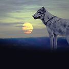 Wolf moon by chihuahuashower