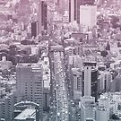 Shutokou Tokyo by Guillaume Marcotte
