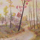 The Trail by Cynthia Kondrick