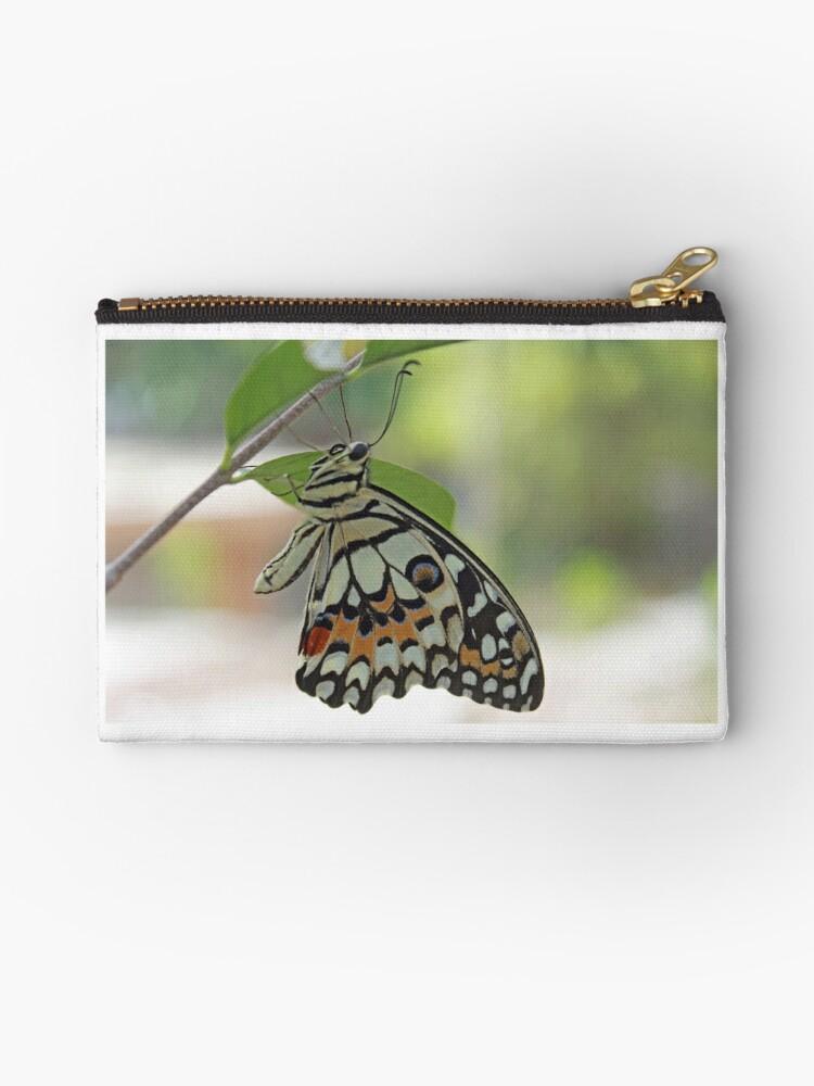 « Donnez des ailes à vos projets! » par Shoomeatove