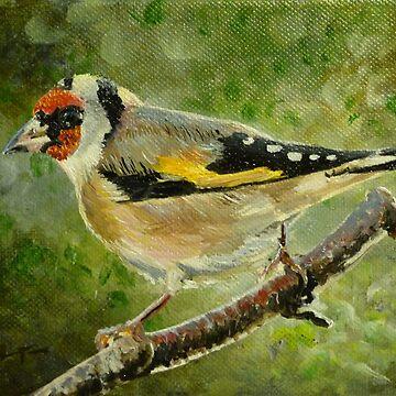 Little goldfinch by CamphuijsenArt