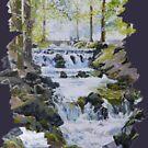 Waterfall by CamphuijsenArt