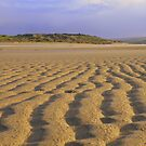 Cornwall: Patterns in the Sand by Rob Parsons