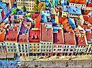 Roofs by Evelina Kremsdorf