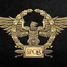 Gold Roman Imperial Eagle - SPQR Special Edition over Black Velvet by Serge Averbukh