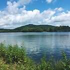 Melton Hill Lake by Lindsay Merwin