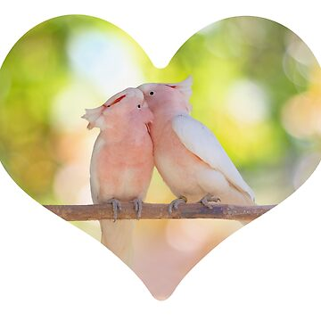 Pink cockatoo lovebird meets parrot in love in a heart by TJBest
