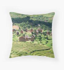 an unbelievable Madagascar landscape Throw Pillow