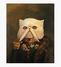 Persian Cat Emperor Photographic Print