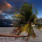 Tropical Evening in Paradise by John Wallace