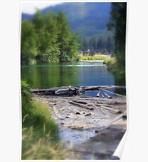 Lake swamp Poster