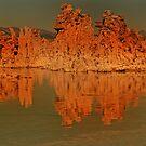 Mono Lake Reflections by socalgirl