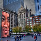Chicago's Millennium Park by Sue  Cullumber