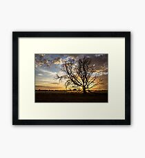 Tree Silhouette at Sunrise Framed Print