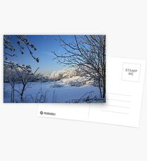 New Fallen Snow Postcards