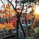Gilsangsa temple during autumn by aaronchoi