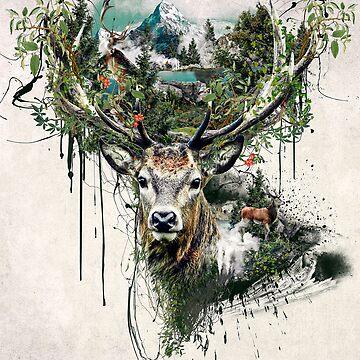 Deer by rizapeker