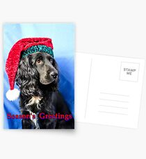 Season's greetings dog Postcards