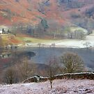 Loughrigg Tarn by Debbie Ashe