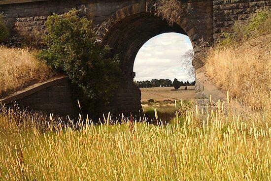 Railway Bridge,Geelong Outskirts by Joe Mortelliti