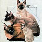 Tonkinese by BarbBarcikKeith