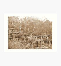 Mt Dandenong, VIC, Australia Art Print