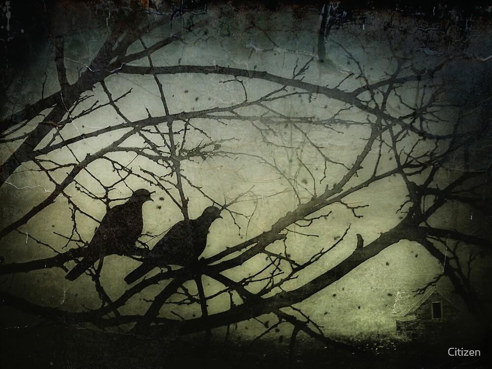 Them Demons by Nikki Smith (Brown)