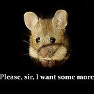 Cute sad mouse - 'Please, sir, I want some more.'   by Simon-dell
