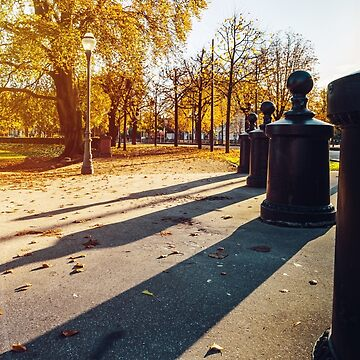Long shadows on the ground, autumnal sunset by sorokopud
