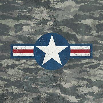 USAF Camouflage Vintage Emblem by Lidra