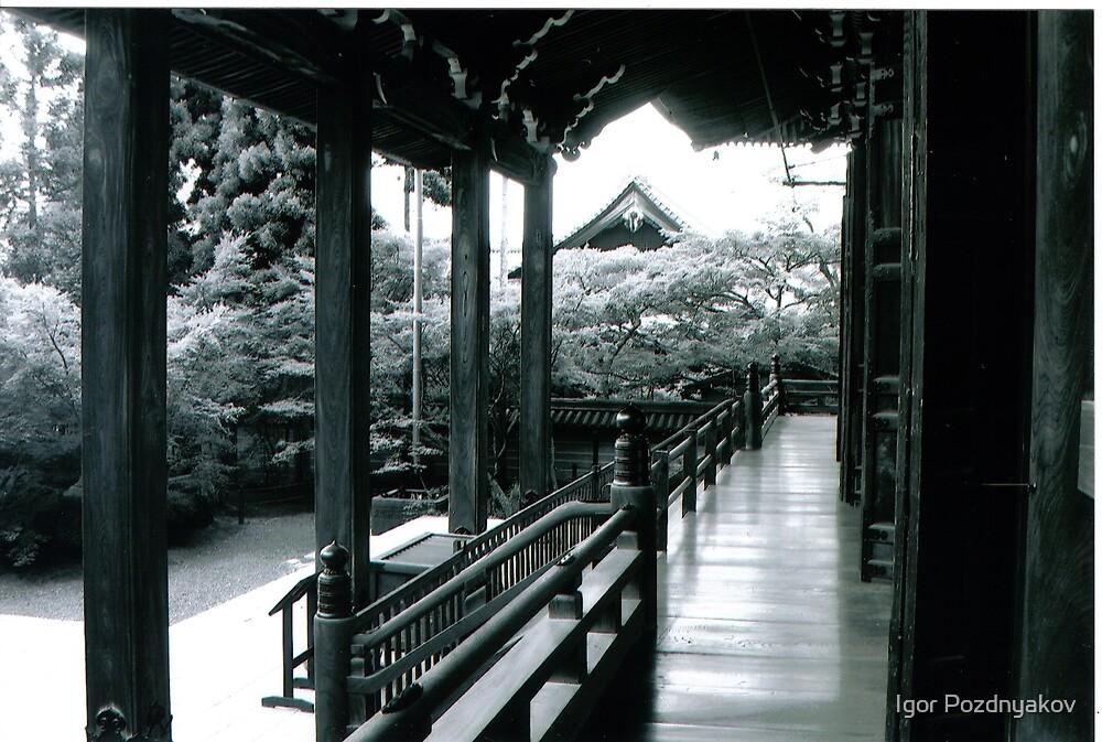 Kyoto, Eikan-do Zenrin-ji Temple (永観堂禅林寺). Japan by Igor Pozdnyakov
