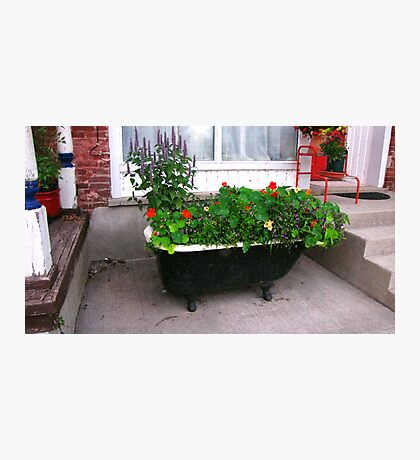A Tub of Flowers! Photographic Print