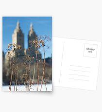 Central Park frozen pond Postcards