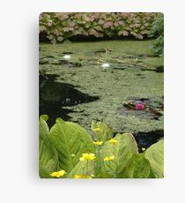 Inverewe pond Canvas Print