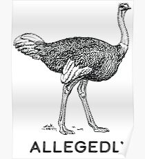 Allegedly Poster
